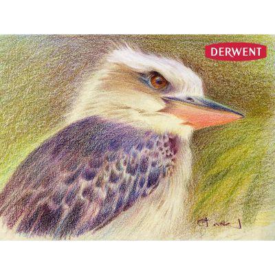 Derwent Coloursoft X12